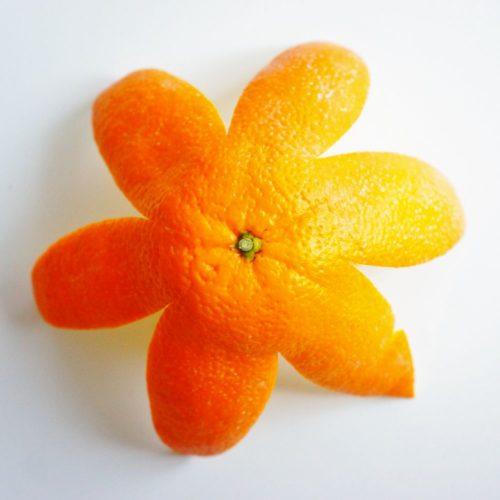 skórka pomarańczowa najlepszy krem antucellulitowy