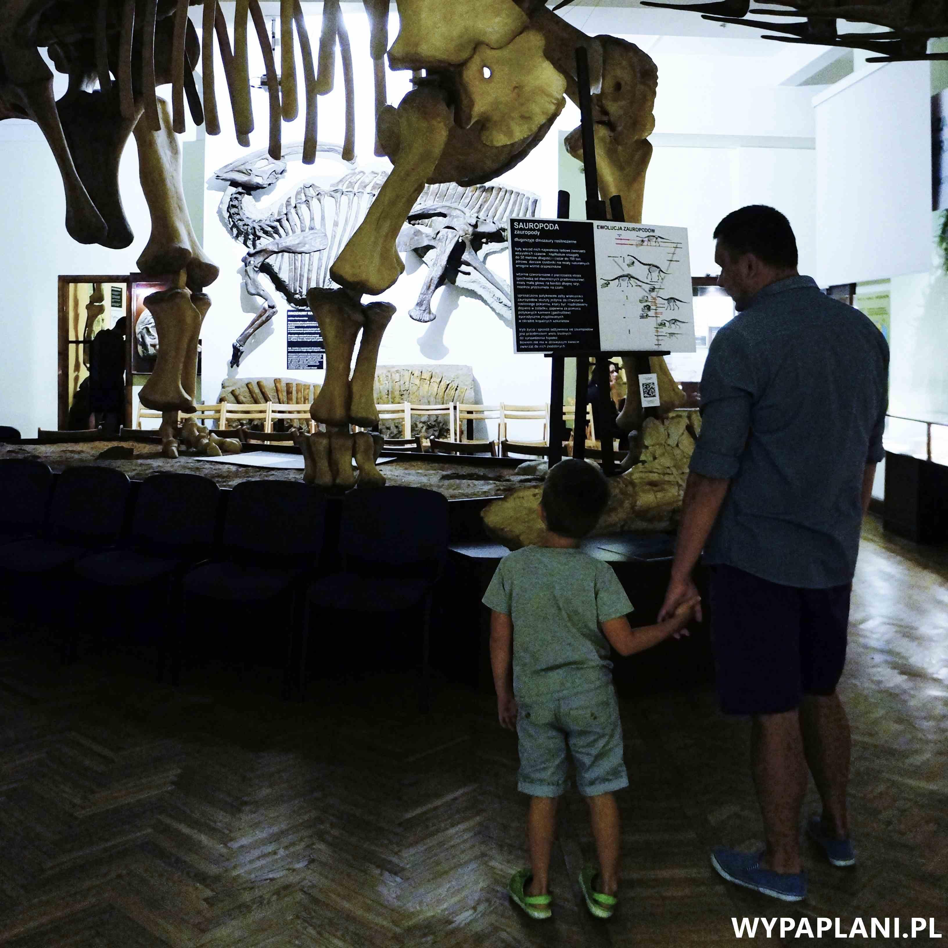 dsc00574_muzeum-ewolucji-warszawa