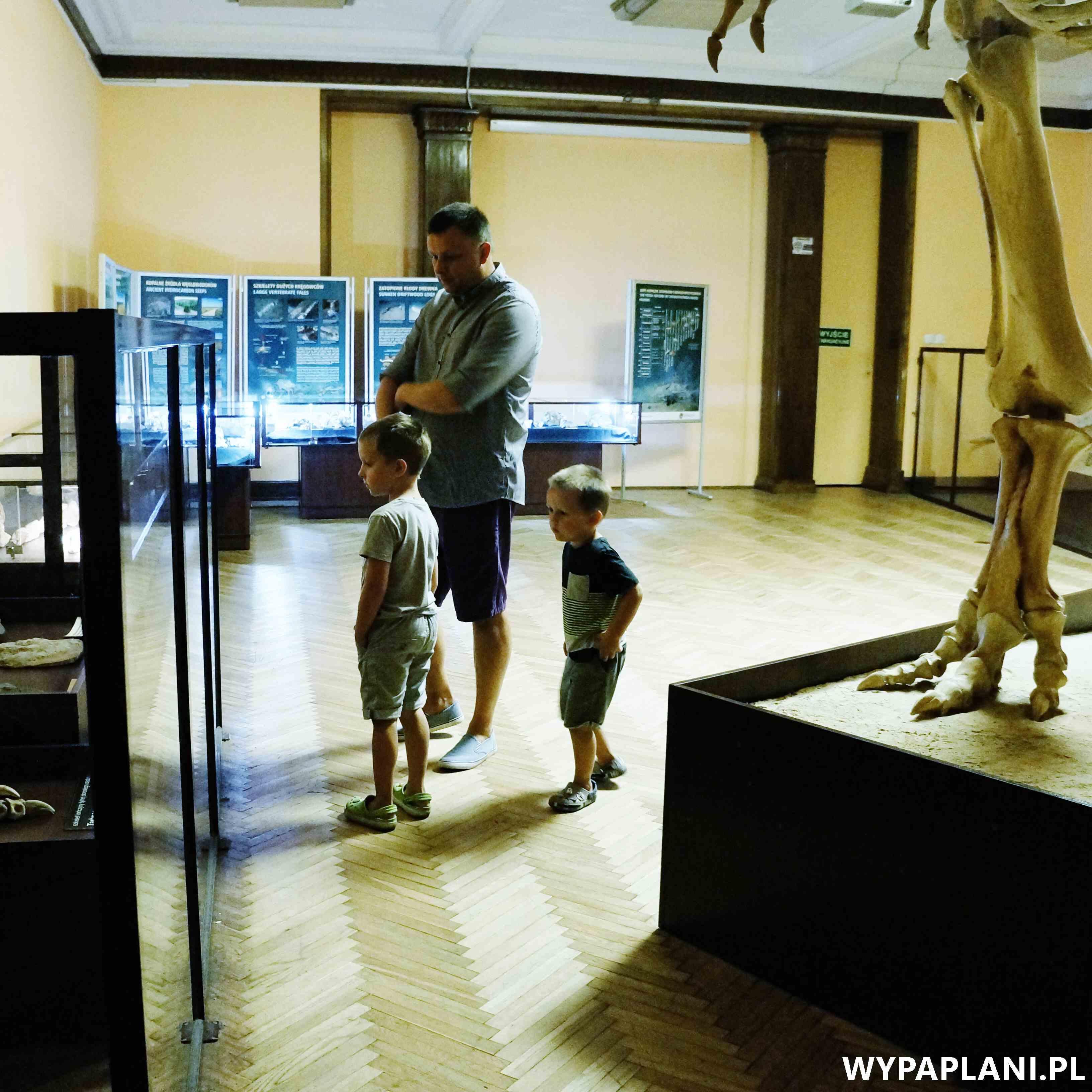 dsc00579_muzeum-ewolucji-warszawa
