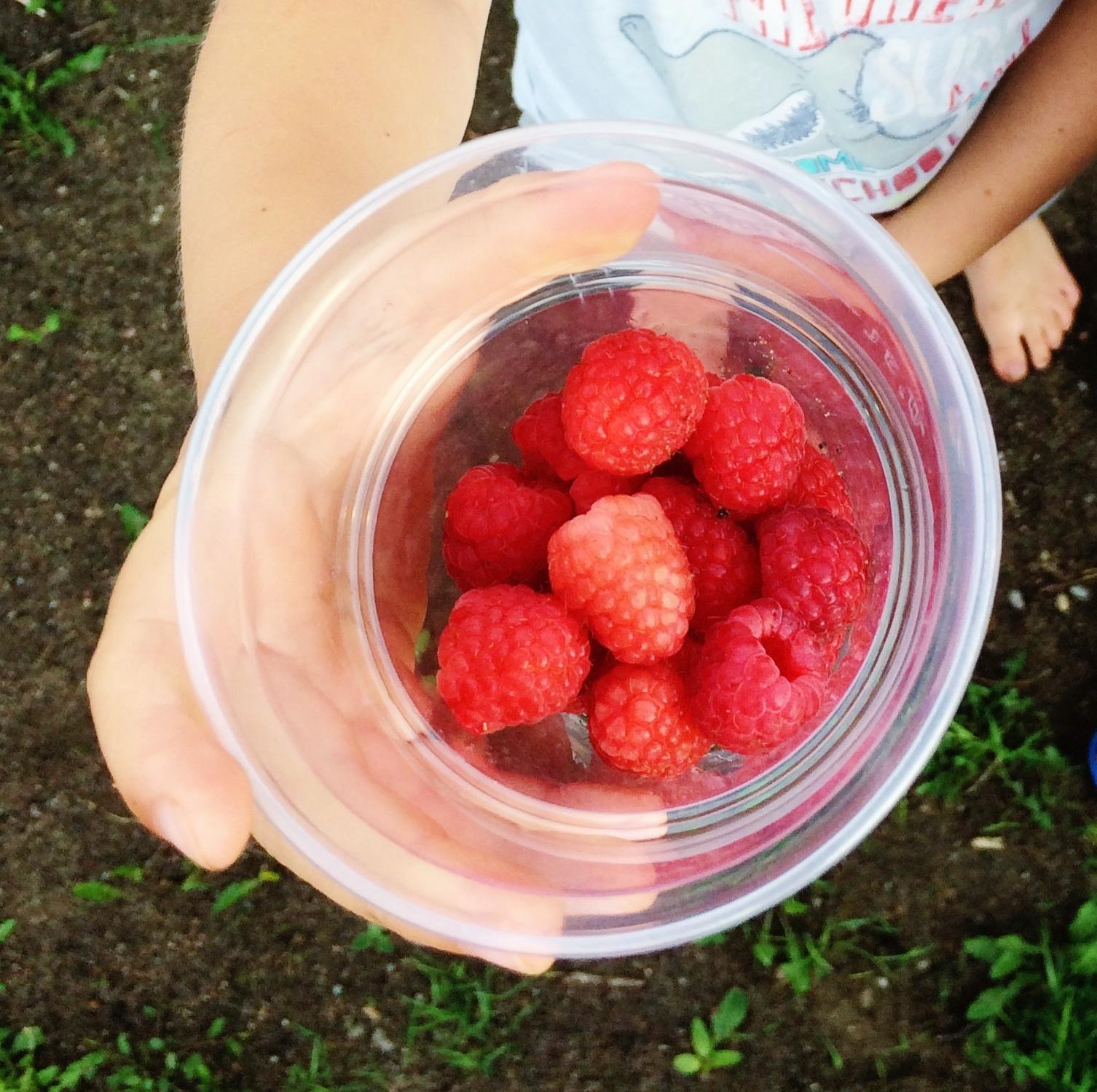 dzień słodyczowy, słodycze w diecie dziecka, jak odzwyczaić dziecko od słodyczy, dzień słodyczy, słodycze dla dzieci